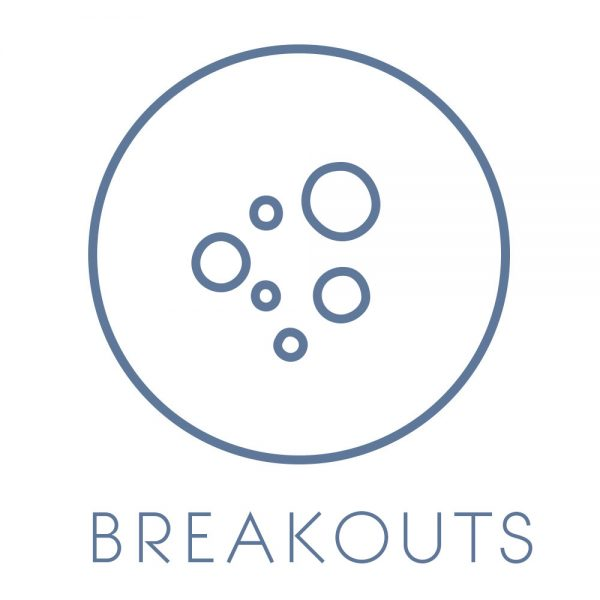 breakout_acne_prone_skin_solution