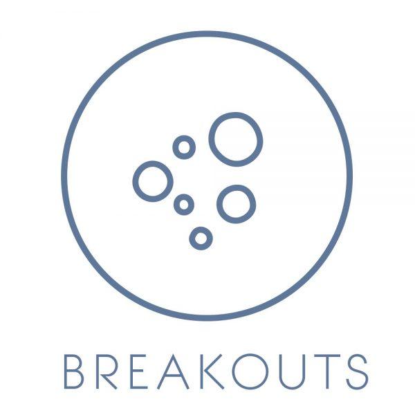 breakout_acne_prone_skin_solution